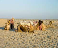 Ajmer Tourism